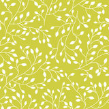 Seamless floral pattern with plant Royalty Free Stock Photo