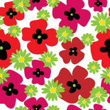 Seamless floral pattern with poppies and daisies Royalty Free Stock Photography