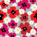 Seamless floral pattern with poppies and daisies. Seamless floral pattern with a poppies and daisies Stock Images