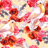 Seamless floral pattern with poppy, rose and birds. Watercolour Royalty Free Stock Image