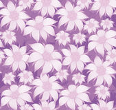 Seamless floral pattern. On purple background purple flowers of edelweiss, water lily, lotus. For postcard, invitations, textiles. Royalty Free Stock Photos