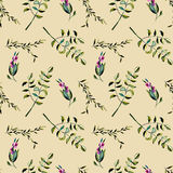 Seamless floral pattern with purple berries and acacia tree branches Stock Photo