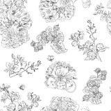 Seamless floral pattern raspberries, peony. Hand drawn illustration fabric, wrapping. Seamless floral pattern with peony and raspberries, black line on white Royalty Free Stock Photography