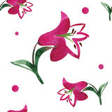 Seamless floral pattern with a red lily on white Stock Photography
