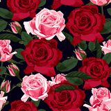 Seamless floral pattern with red, pink and green leaves roses on black background. Vector illustration stock illustration