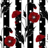 Seamless floral pattern with red poppies striped background Stock Photos