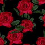 Seamless floral pattern with red roses on black background. Vector illustration royalty free illustration