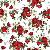 Seamless floral pattern with red roses on white background Stock Image