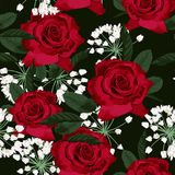 Seamless floral pattern with red roses and white herbs on black background. Vector illustration stock illustration