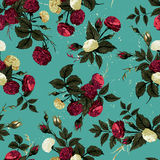 Seamless floral pattern with red and white roses Stock Photos
