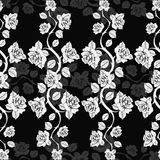 Seamless floral pattern with roses branches. White roses on a black background. Royalty Free Stock Image