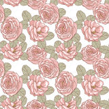 Seamless floral pattern. Roses 1 Stock Photography
