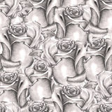 Seamless floral pattern with roses painted by grey (simple) pencil Stock Photo