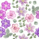 Seamless floral pattern. On white background stock photos