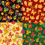 Seamless floral pattern set Royalty Free Stock Photography