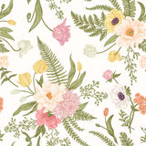 Seamless floral pattern  with spring flowers. Stock Images