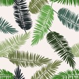 Tropical palm print. Seamless floral pattern with stylized palm leaves. Jungle foliage, green hues on ecru background. Textile design Stock Photo