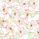 A seamless floral pattern with the tender pink apple tree blooming flowers, painted in a watercolor Royalty Free Stock Image