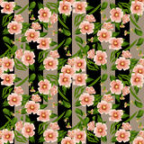 Seamless floral pattern texture striped background Stock Photography