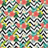 Summer hibiscus seamless patterns on zigzag black lines tropical flowers exotic fruits background. Seamless floral pattern with tropical flowers on black zigzag stock illustration