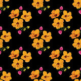 Seamless floral pattern with tropical flowers. Vintage print. Royalty Free Stock Photography