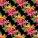 Seamless floral pattern with tropical flowers. Vintage print. Royalty Free Stock Photo