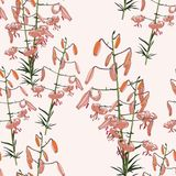 Seamless floral pattern of tropical orange lilies. Hand painted flowers. Isolated on light pink background. Fabric texture Royalty Free Illustration