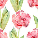 Seamless floral pattern with tulips Royalty Free Stock Photography