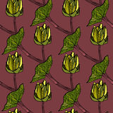 Seamless floral pattern vector illustration Royalty Free Stock Image