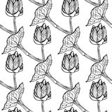 Seamless floral pattern vector illustration Stock Photos