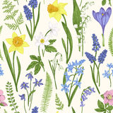 Seamless floral pattern. Vintage seamless floral pattern. Spring flowers and grass. Botanical vector illustration. Engraving. Colorful Stock Image