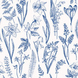 Seamless floral pattern. Stock Photos