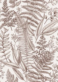 Seamless floral pattern in vintage style. Royalty Free Stock Image