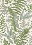 Seamless floral pattern in vintage style. Stock Image