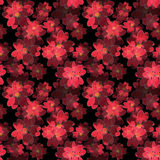 Seamless floral pattern. Wallpaper seamless flower pattern backg Stock Image