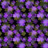 Seamless floral pattern. Wallpaper seamless flower pattern backg Stock Photos