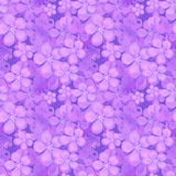 Seamless floral pattern. Wallpaper seamless flower pattern Stock Photography