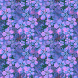 Seamless floral pattern. Wallpaper seamless violet blue flower p Stock Photos