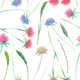 Seamless floral pattern with the watercolor clover flower and grass Stock Photography