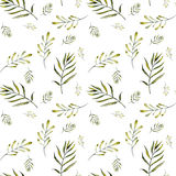 Seamless floral pattern with watercolor green fern branches Stock Photography
