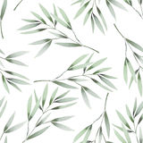 Seamless floral pattern with the watercolor green leaves on the branches Royalty Free Stock Photography