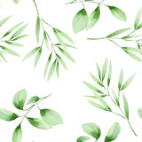Seamless floral pattern with the watercolor green leaves on the branches Royalty Free Stock Photos