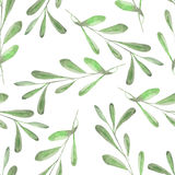 Seamless floral pattern with the watercolor green leaves on the branches Stock Photo