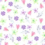 A seamless floral pattern with watercolor hand-drawn pink and purple spring flowers Royalty Free Stock Images