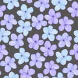 A seamless floral pattern with watercolor hand-drawn tender blue spring flowers Royalty Free Stock Photos