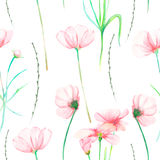 A seamless floral pattern with watercolor hand-drawn tender pink cosmos flowers Royalty Free Stock Image