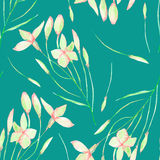 A seamless floral pattern with watercolor hand-drawn tender pink spring flowers Royalty Free Stock Photography