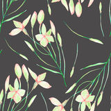 A seamless floral pattern with watercolor hand-drawn tender pink spring flowers Royalty Free Stock Images