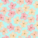 A seamless floral pattern with watercolor hand-drawn tender pink spring flowers Royalty Free Stock Image