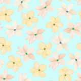 A seamless floral pattern with watercolor hand-drawn tender pink spring flowers Stock Images